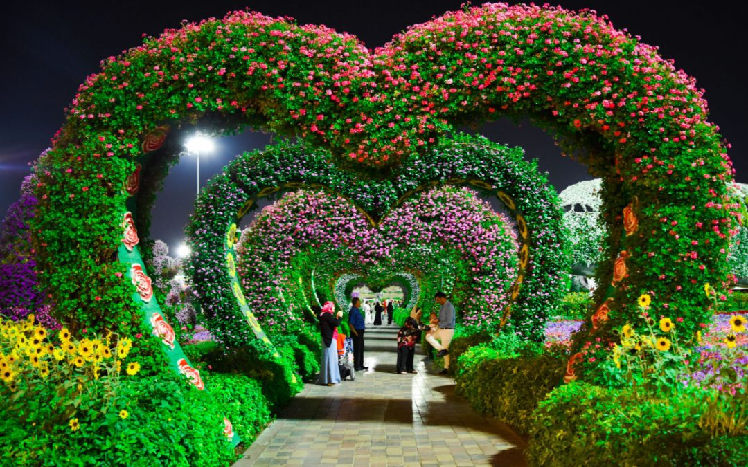 Where to Find Beautiful Wedding Arches for Rent