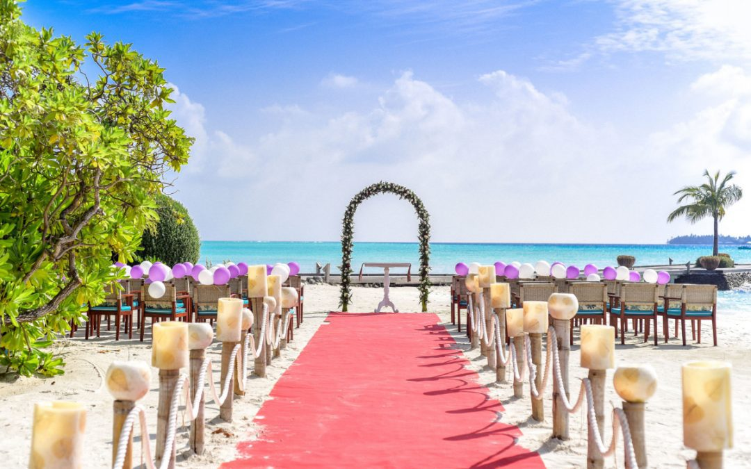 Where to Buy a Wedding Arch: A Complete Guide