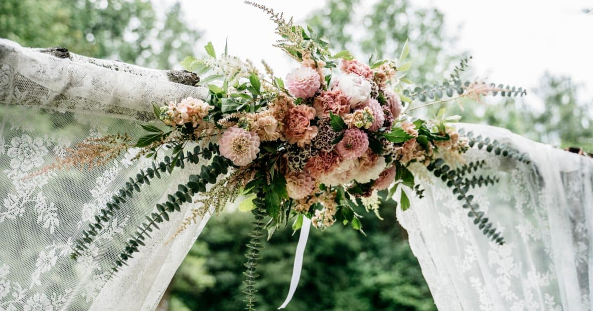 beautiful birch wedding arch with pink roses