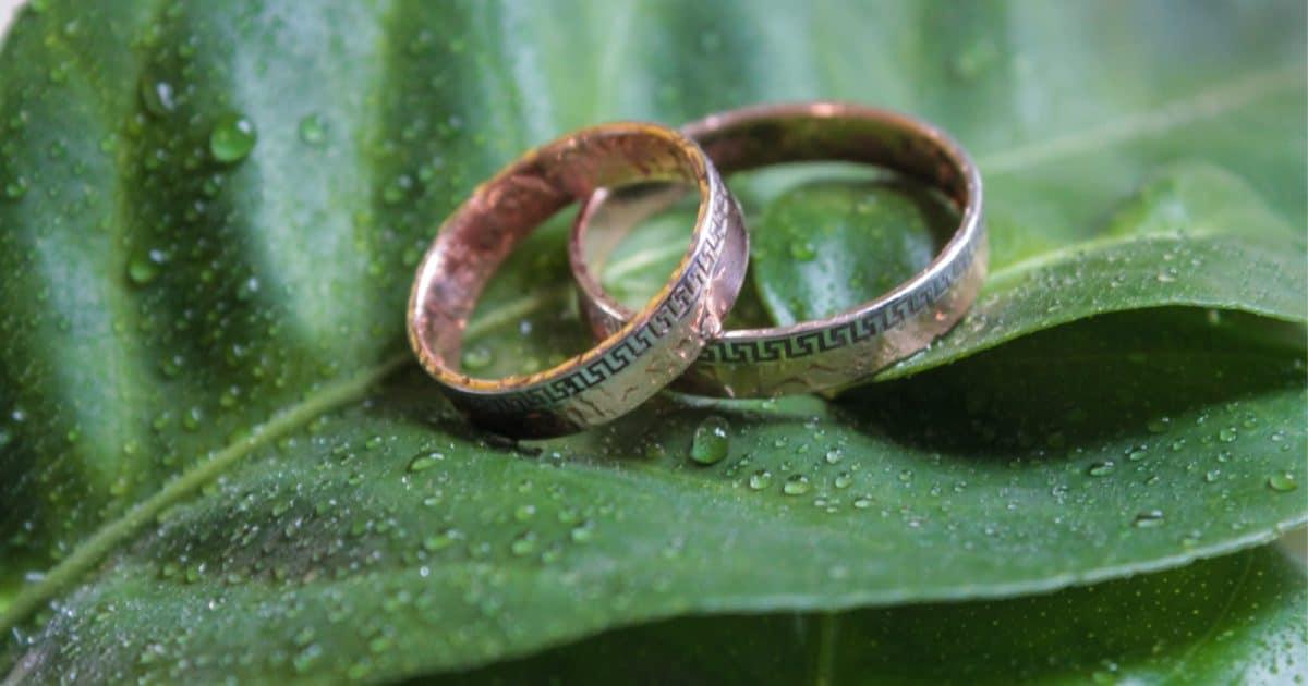 wedding bands on a leaf