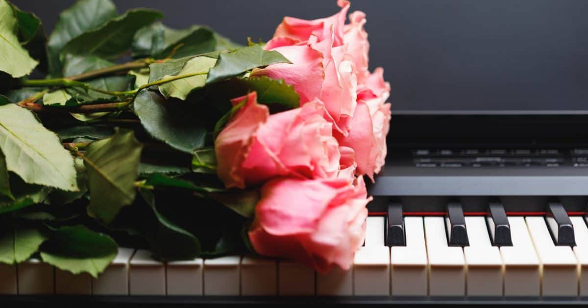 pink roses on a keyboard