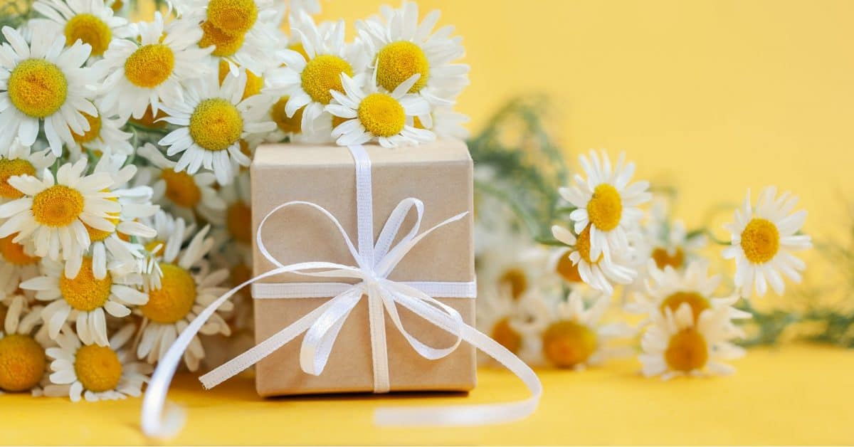 practical wedding gifts wrapped up in brown paper, with daisies in the background