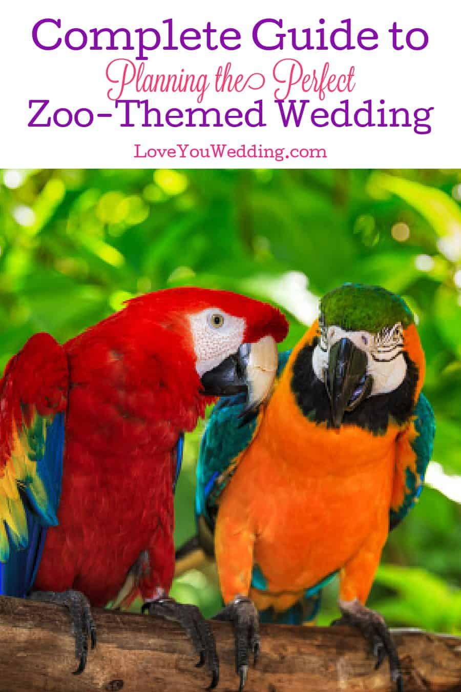 Planning a zoo-themed wedding? Check out our guide to everything from find the perfect venue to giving guests adorable favors!
