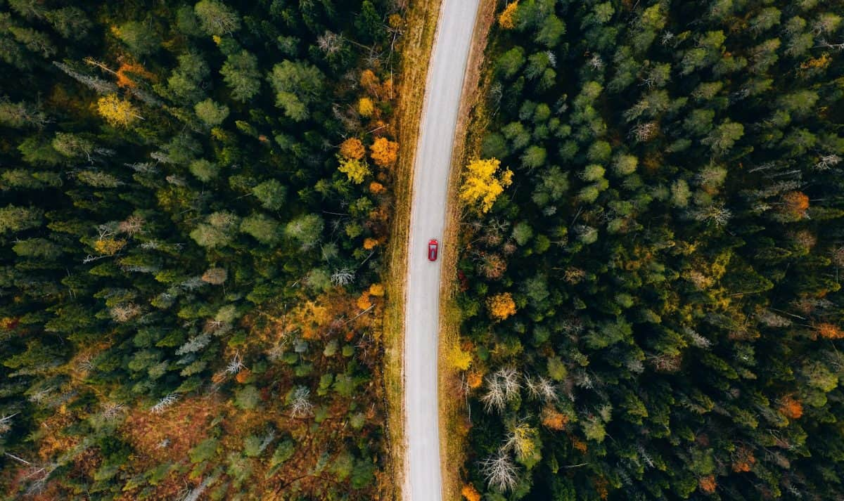 Aerial view of rural road with red car in yellow and orange autumn forest. No-Fly Honeymoon Ideas for Same-Sex Couples in the US