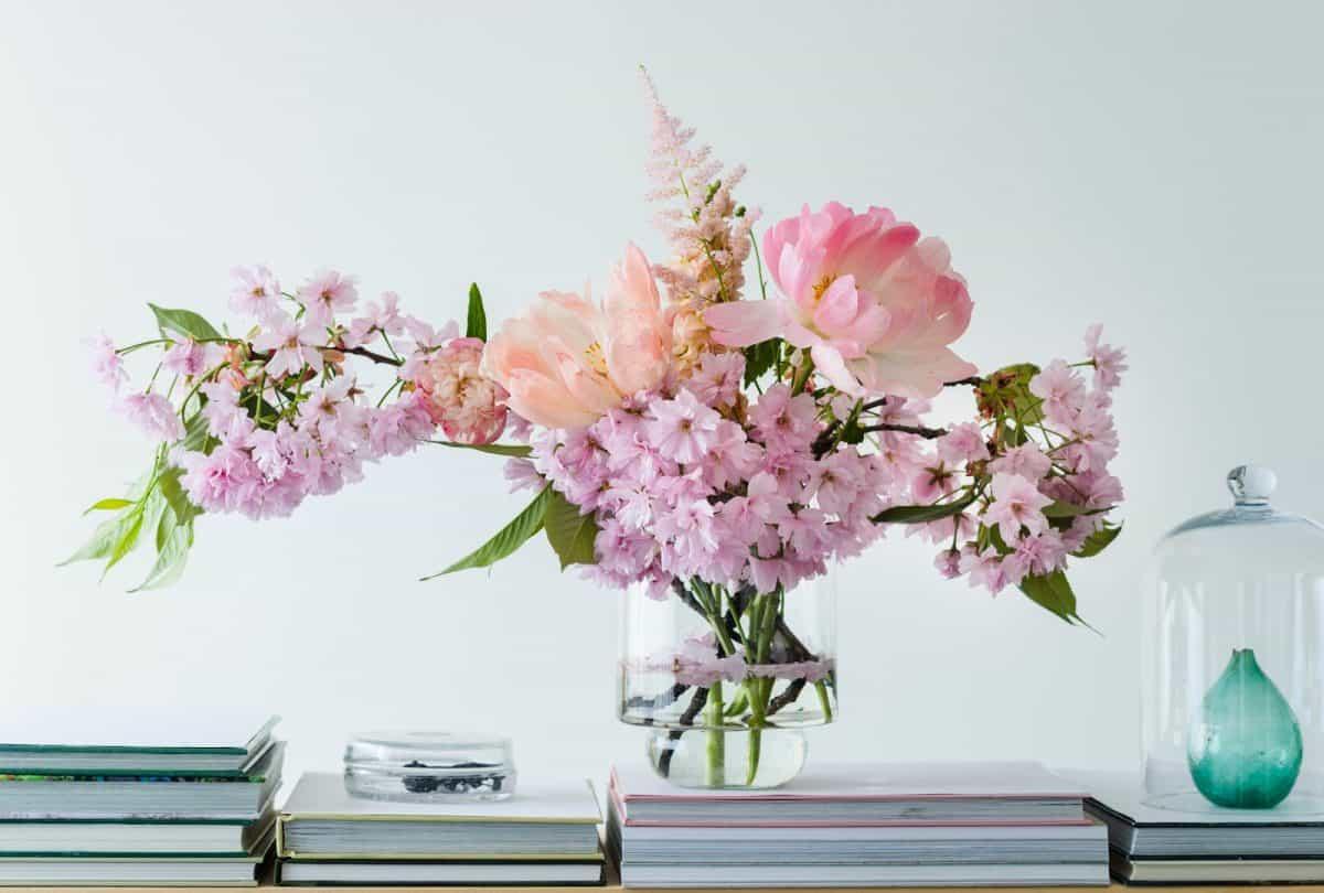 Peony - pink, cherry blossoms;