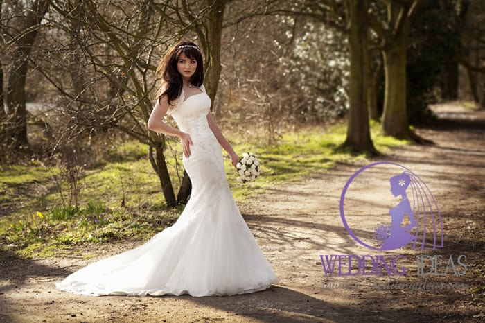 A-line bride dress, a straight necklace with lace straps and short train on the skirt, jewelry elements on the bodice.