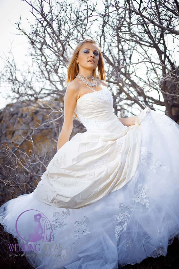 Ball gown with straight necklace.