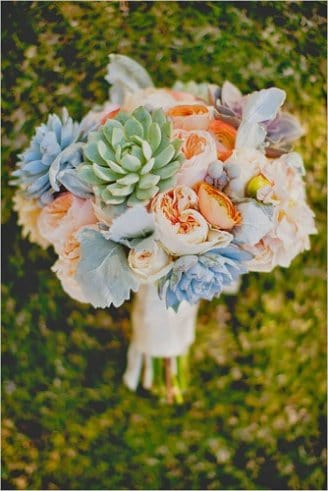 green and blue succulent flowers, round orange and white flowers