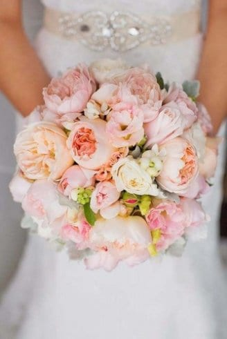 large round pink flowers, grey leafy flowers and green flower buds