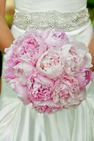 A superb one-colored bouquet consisting of large round pink flowers