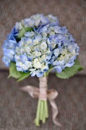 A lovely wedding bouquet comprised of white and blue flowers and green leaves tied with a white ribbon
