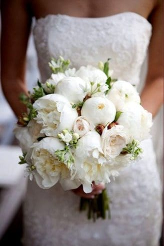 large round white and green flower buds held by the bride