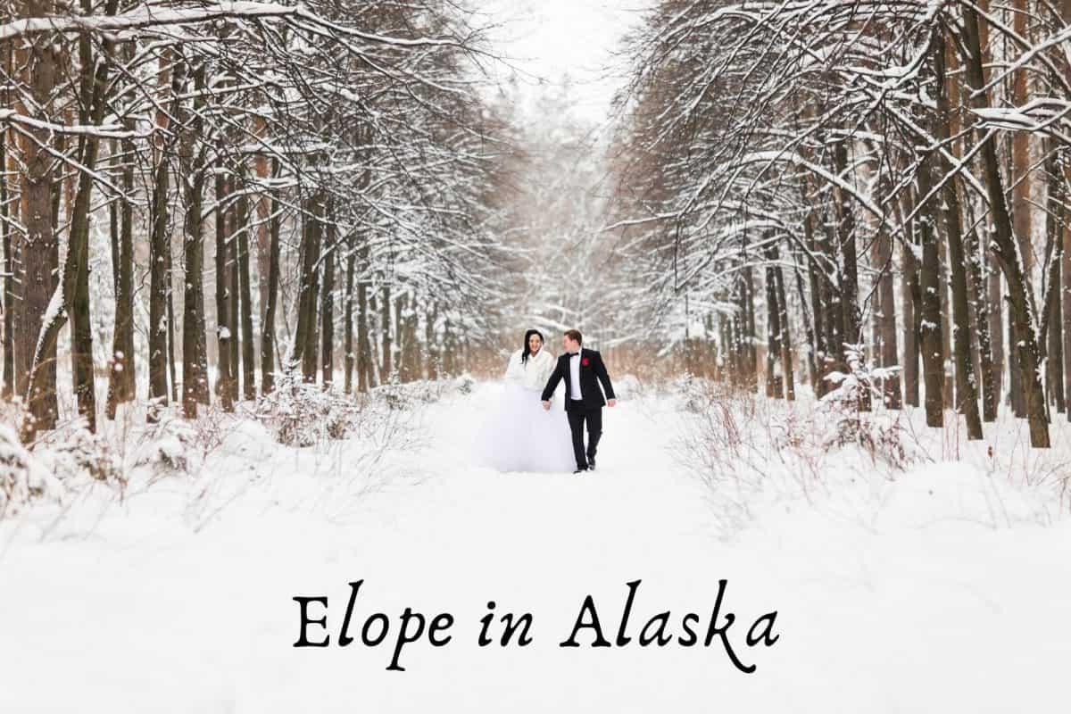 bride in groom doing elope in alaska